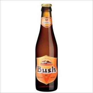 bush 33
